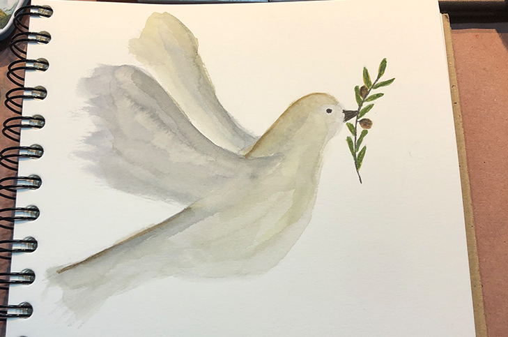 Dove with olive branch watercolor